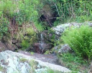 Dripping Well, Malvern Spa Association