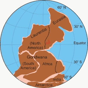 """Figure Twelve. Position of the continents during the Carboniferous (302 million years). Gondwana and Laurasia have """"welded"""" together to form the super continent of Pangaea."""