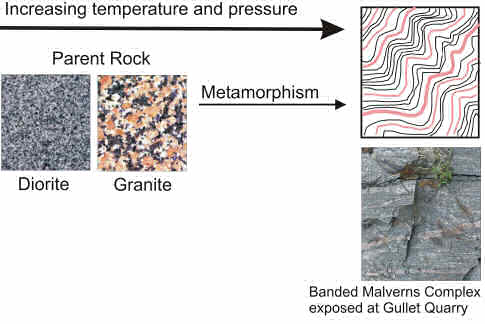 "Figure Three. High temperatures and pressures caused by tectonic activity has modified or ""metamorphosed"" the Malverns Complex. Many of the rocks exposed in the Southern end of the hills exhibit a banded or layered texture."