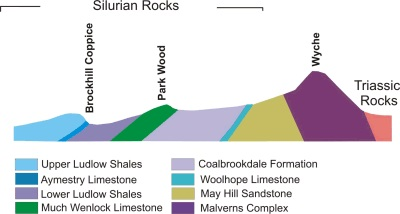 Figure Nine. Cross Section illustrating Silurian Strata from Wyche Cutting to Brockhill Coppice.